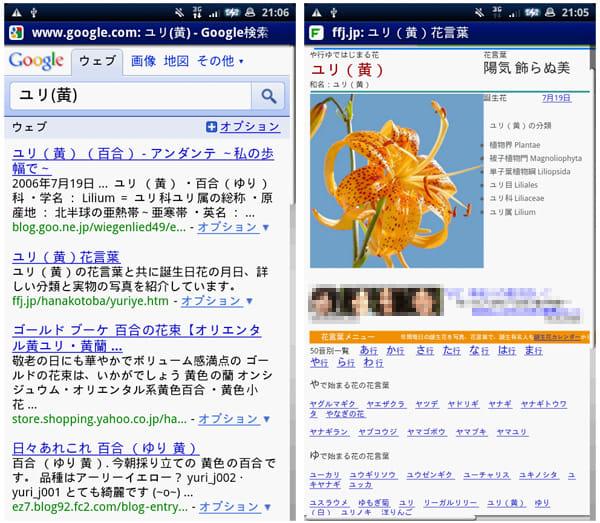 誕生日大辞典:花言葉もすぐに検索