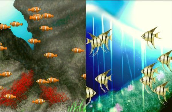 AquaCharger : 好きな魚を一種類だけたくさん入れてみる、など、こだわりの水槽をつくってみてください!
