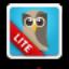 HootSuite Lite