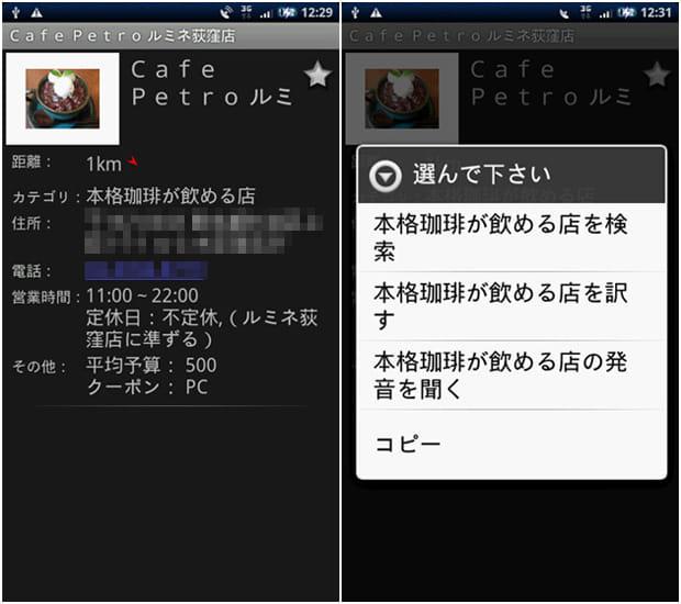 ローカルサーチ:詳細画面(左)コマンド表示(右)