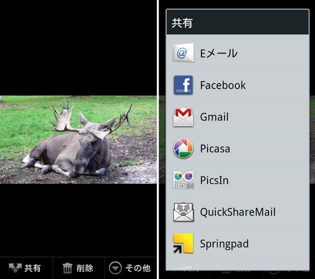 メールで画像や動画をコピー