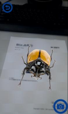 Biz-AR Pocket View