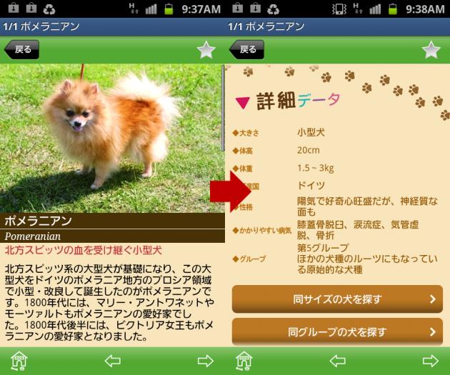世界の犬図鑑347選:犬種詳細ページ