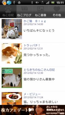 日刊ねこ新聞-猫情報まとめ