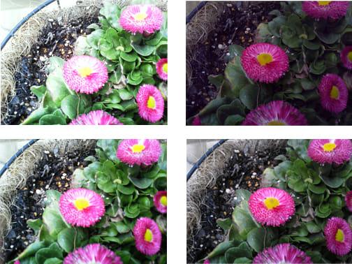 明るさ補正を行った写真。右上から時計回りに-2、-1、+1、+2