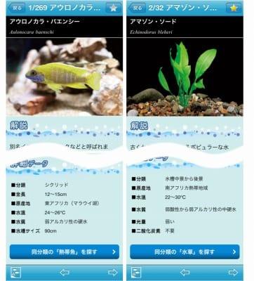 熱帯魚&水草図鑑322選:詳細ページ