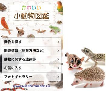 かわいい小動物図鑑