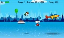 Birdman Rally