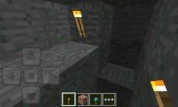 Minecraft - Pocket Edition:ポイント4