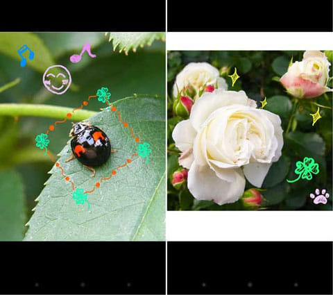 Copic(カメラや写真でスタンプ作成):作成例