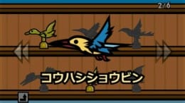 カラスと鳥かごときどきウンコ:ポイント5