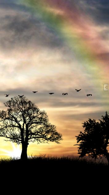 虹がかかった朝日が美しい、シンプルなホーム画面