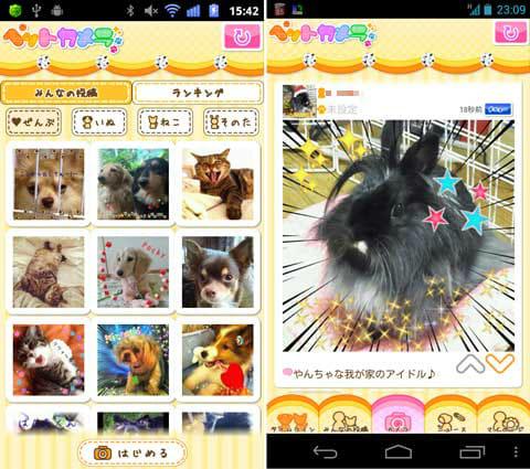 ペットカメラ:みんなの投稿写真の一覧(左)パーツを組み合わせて楽しくデコれる(右)