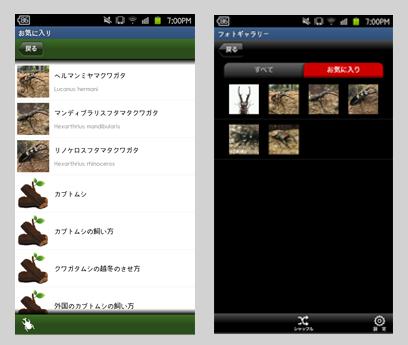 世界のカブト・クワガタ図鑑:お気に入り(左)フォトギャラリー(右)