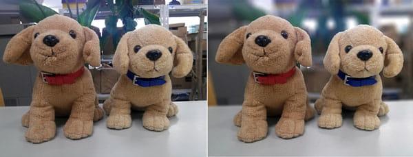 AfterFocus:元画像(左)加工した画像。ボケ表現により、元画像よりも被写体が引き立っている(右)