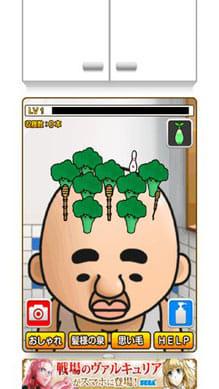 ハゲパラ Let's 育毛:ハゲオヤジの頭の上でいろいろな髪の毛を育毛しよう!