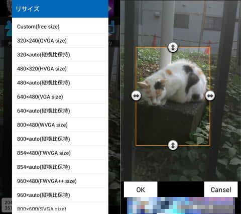 写真・画像リサイズ&JPG⇔PNG画像変換|i e r:サイズを指定するだけの「リサイズ」(左)範囲指定するだけの「トリミング」(右)