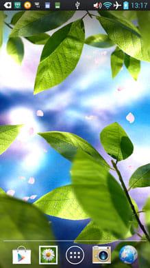 Fresh Leaves:テーマ「Sakura day」に設定。舞う花弁と背景に桜の木で春っぽさアップ