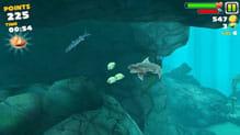 Hungry Shark Evolution:ポイント3