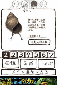 小鳥パウダーでらっくす【産卵育成ゲーム】:ポイント6
