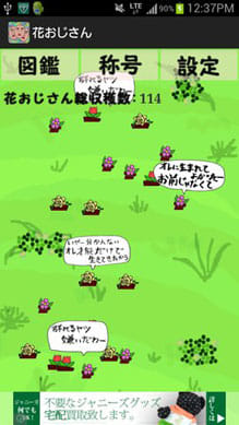 花おじさん栽培キット:ポイント2