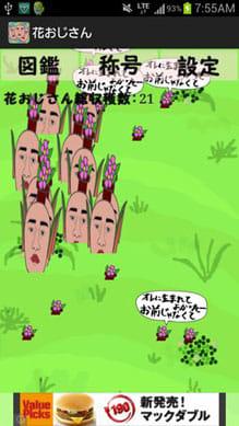 花おじさん栽培キット:ポイント3