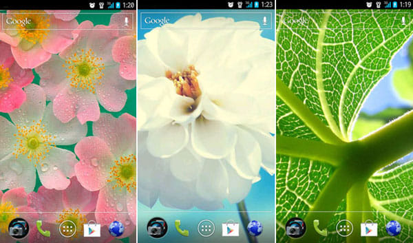 クールな壁紙HD:「Plants」で検索