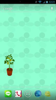 トマト栽培バッテリーウィジェット