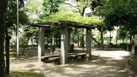 公園のベンチ:AQUOSで撮影
