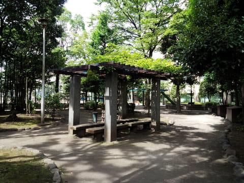 公園のベンチ:ARROWS NXで撮影