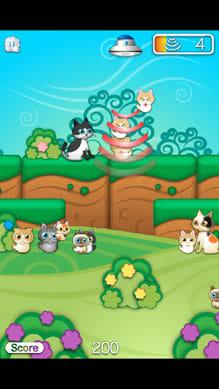 ネコアップ2:小さなネコから保護していこう