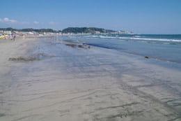 約900メートルも続く砂浜が特徴の由比ガ浜海水浴場