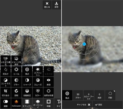 Autodesk Pixlr:「調整」では画像の色調やシャープネス調整など、強弱も思い通りに行える