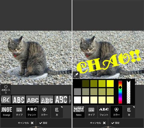 Autodesk Pixlr:「タイプ」でメッセージを記入!