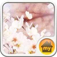 『桜 Theme』~春色に染まるホーム画面に心もウキウキ明るくなる~
