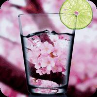 お花見で撮るならコレ!美麗な桜カメラ3選【Android&iPhone用】