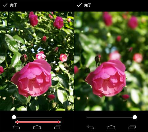 Googleカメラ:ぼかしなし写真(左)最大ぼかし写真(右)