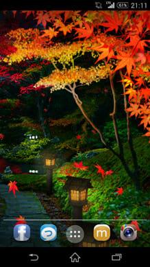 錦秋の坂道:夜になると別の雰囲気を楽しむことができる