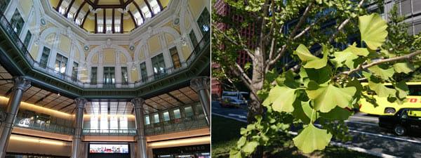 東京駅の丸の内側の地上改札で撮ってみた。柱の上には網が張ってあるが、それすらも再現できている。柱の階調も抜群の表現力だ(左)背景ボケのテスト。木の幹やバスもナチュラルなボケ味で美しい(右)