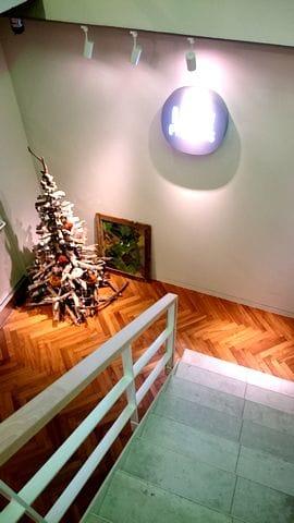 階段を降りると、クリスマスツリーが見えて…