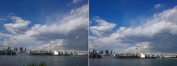 画面下の木の枝が残念な例(左)カメラの角度を変えて木の枝が写らないように撮影(右)
