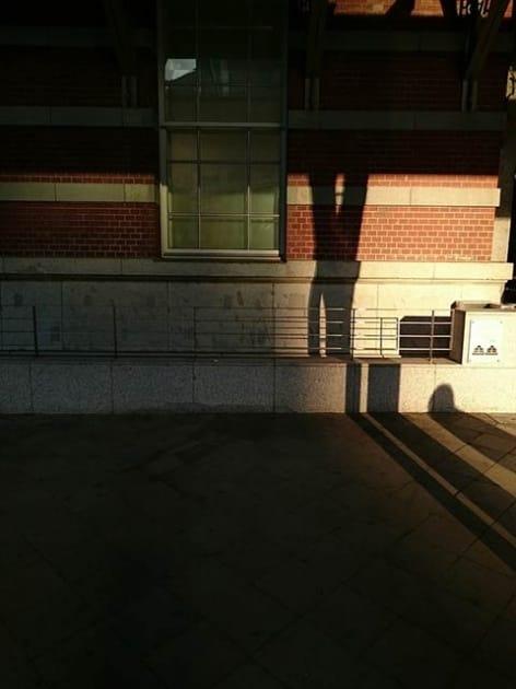 ホワイトバランスや明るさを調整して、写真を「演出」