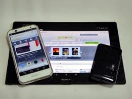 モバイルWi-Fiルータ(ポケットWi-Fiルータ)を便利に使う方法!~通信料の節約や万一の際に有効~