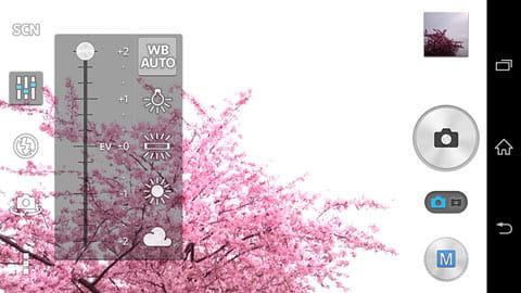明るさを+2にすると桜のピンクが綺麗に見えましたが、空は真っ白になってしまった