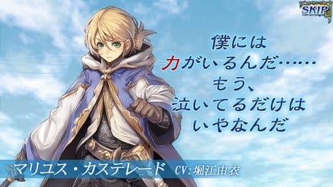 オルタンシア・サーガ -蒼の騎士団-:ポイント4