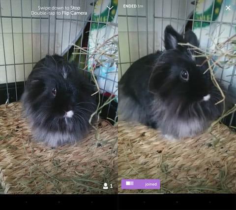 Periscope:動画配信画面(左)他ユーザログイン画面(右)