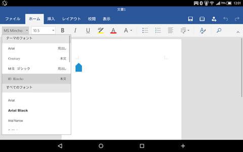 Microsoft Word:編集画面