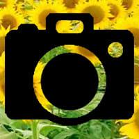 四季折々を撮るならコレ!取り付けが簡単なスマホカメラレンズ(ワイド・マクロ・魚眼3点セット)【Android&iPhone】