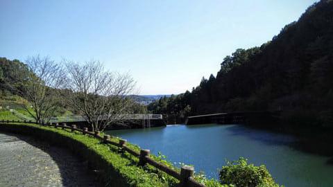砂防ダムからの風景も、青空と緑がバランスよく再現されている。ただ明るく映るだけのスマホとは大違いです