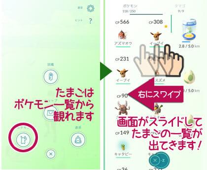 Pokémon GO(ポケモンGO):たまごはここで確認